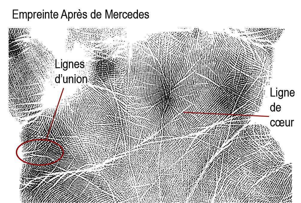 mercedes-left-heart-fr
